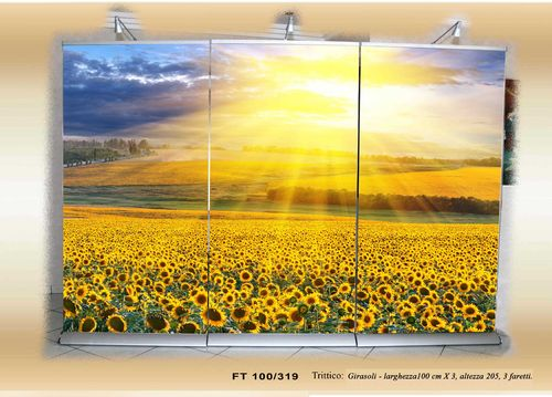 Champ de tournesols - Cod. FT100/319